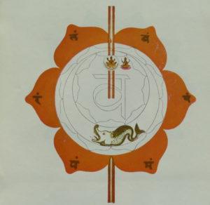 Deuxième chakra relié à un des 5 éléments : l'eau