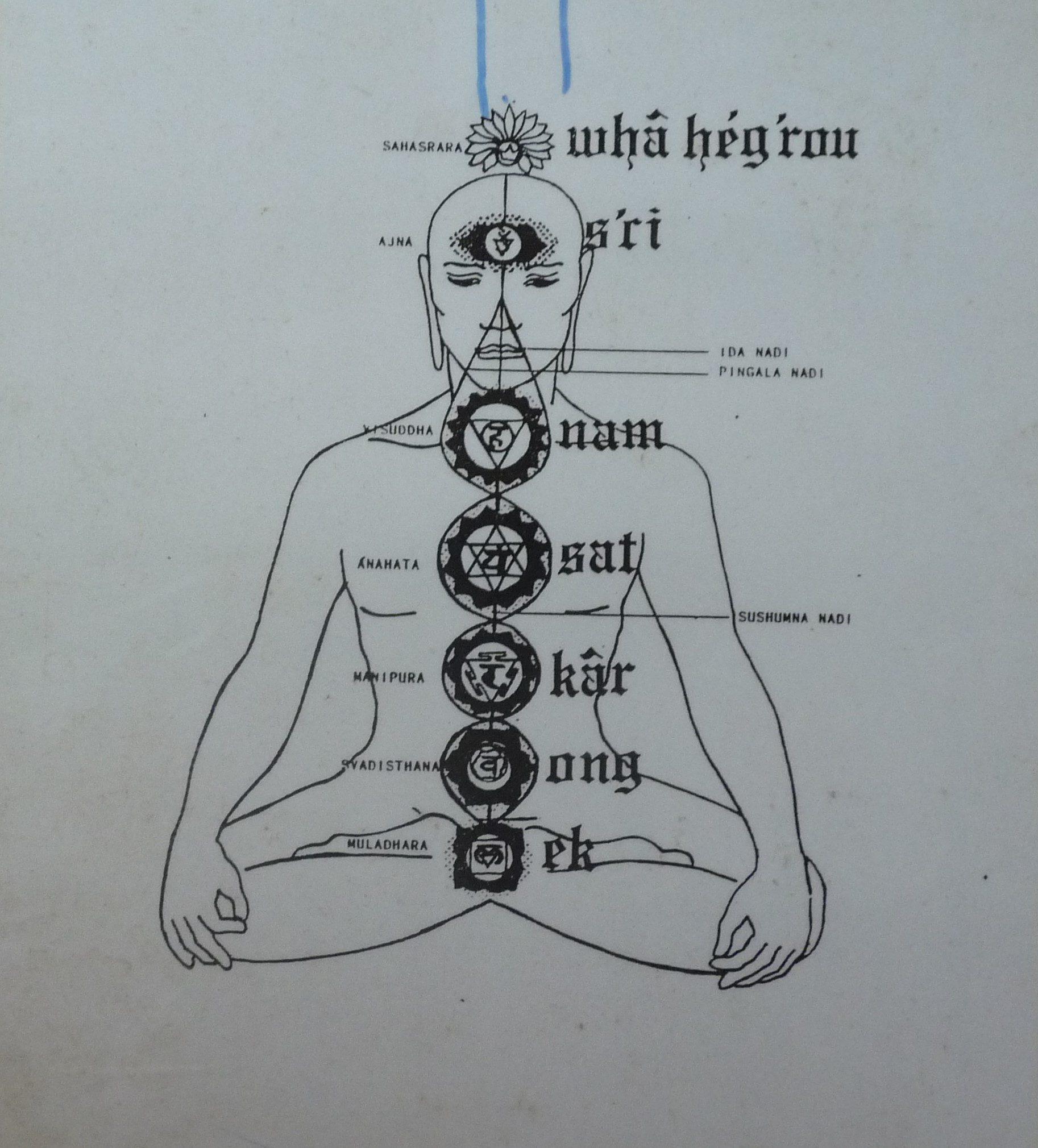 Représentation des chakras